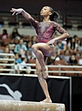 Everest Gymnastics 14