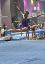 Everest Gymnastics 27