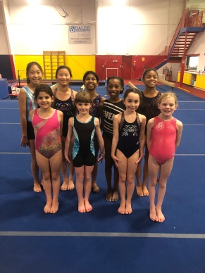 Everest Gymnastics 62